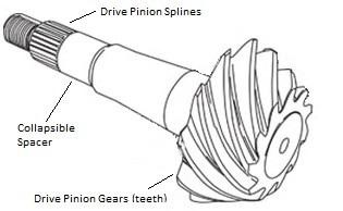 Pinion gear in differential